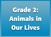 Grade 2: Animals in Our Lives