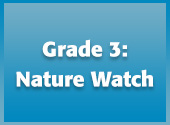 Grade 3: Nature Watch