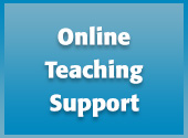 Online Teaching Support